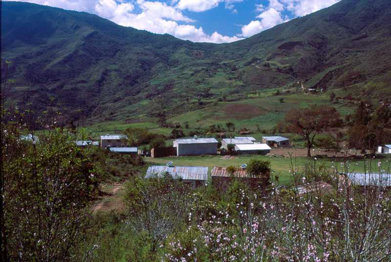 Proyecto en Bolivia 2003